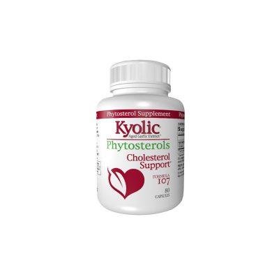 Formula 107 Kyolic Suplemento | Formula 107 Kyolic Supplement